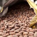 Refinadoras de chocolate